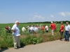 CH group 2007 - in the sunflower field