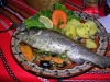 Taste our fish cuisine