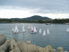 Sailboat tournament in Tsarevo
