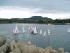 Sailboat tournament in Tsarevo
